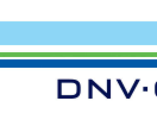 Class society DNV GL has compiled a report on cruise vessels security.