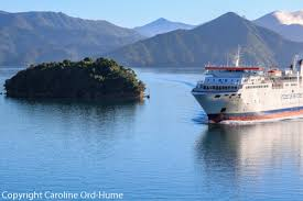 Cook Strait replacements close