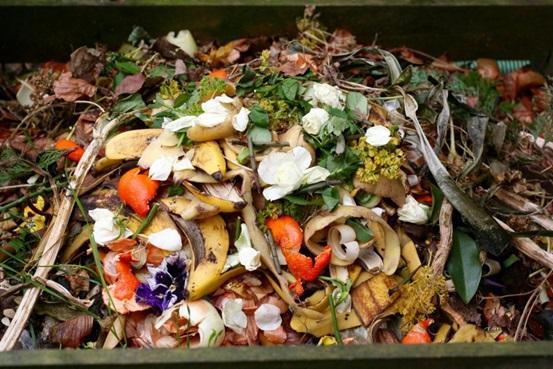 Food waste management order